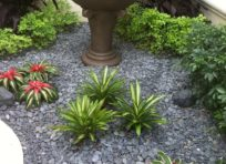 Image: Gallery Photo 4 | Landscaping services at TLC Lawn in Naples, FL