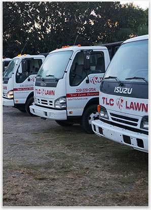 Image: About Us | TLC Lawn trucks - TLC Lawn, Naples, FL