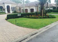 Image: Completed Palm install - TLC Lawn, Naples, FL landscape company