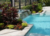 Image: TLC-Residential_3 | Completed Palm install | Landscaping services at TLC Lawn in Naples, FL